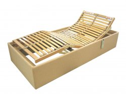 Tulip bedframe with ..